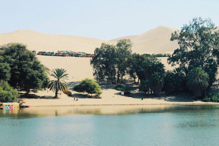 Oasis de Huacacchina